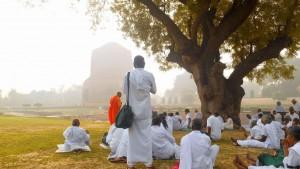 Saranath and Varanasi Bodhi Tree